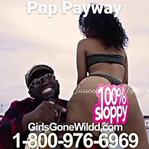 Pnp Payway
