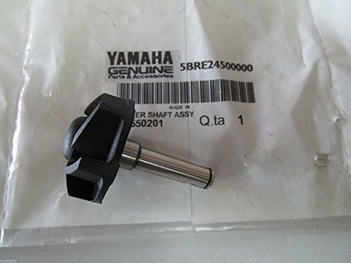 Bomba de agua original Yamaha para Aerox 50 de 1997 a 2016