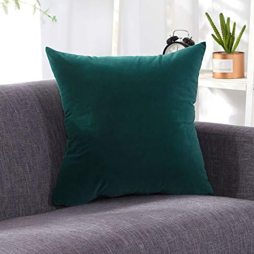 YQDHB Cojín Almohada de Color Puro Terciopelo Suave y Suave Microfibra Almohada Cuadrada Decorativa para Sala de Estar Sofá Sofá Cama Almohada,M-40 * 40cm