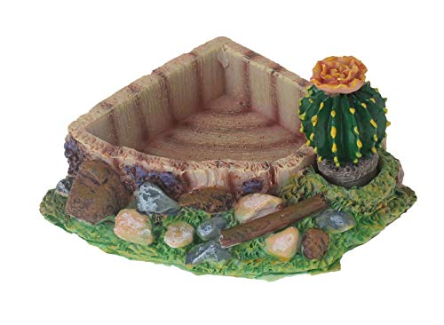 emours Reptile Amphibian Tortoise Lizard Frog Water Dish Food Feeder Cactus Corner Bowl with Ramp Small
