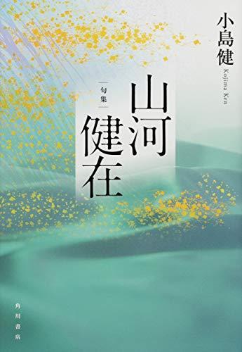 句集 山河健在 角川俳句叢書 日本の俳人100の詳細を見る