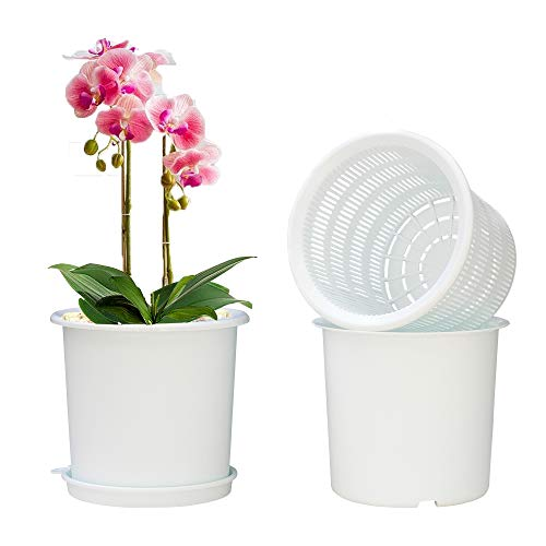 Meshpot 2Pcs 6.3 Inch Plastic Orchid Pots with Holes,Decorative Planter Pots for Indoor Outdoor Flower Plants,Herbs,Snake Plants and Succulents