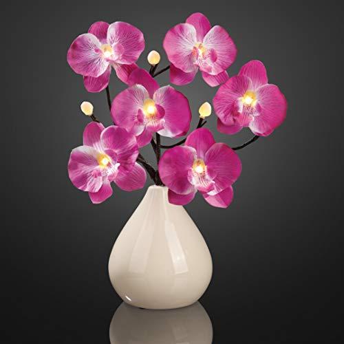 Hellum LED Orchideenzweig violett mit Vase für innen, 35 cm, 9 LEDs warm-weiß mit Batteriebetrieb, 300215