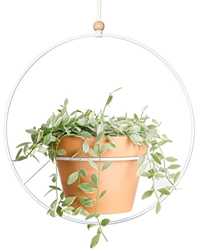Mkono Metal Plant Hanger Modern Round Hanging Planter Mid Century Flower Pot Holder Home Decor, Fits Large 6 Inch Pot (Pot NOT Included)