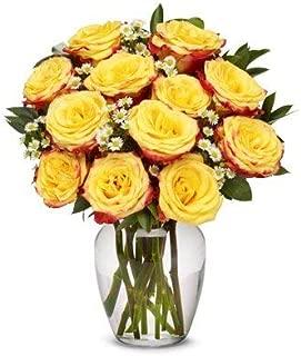 Flowers - One Dozen Festive Roses (Free Vase Included)