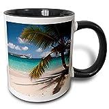 N\A Islas Vírgenes Estadounidenses, San Juan. Taza de Playa, Luna de Miel Salomon Bay, Negro