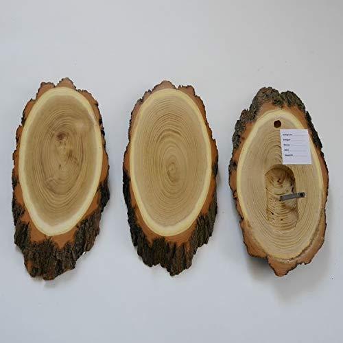 GTK – Cornamenta & Trofeo madera de crucero 3 unidades acacia REH trofeos carteles grandes con compartimento de mandíbula cervatillo árbol disco de árbol