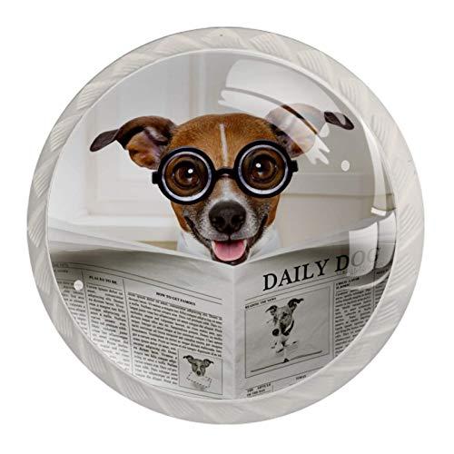 Perillas de armario Gafas perro marrón Pomos y tiradores para gabinetes Pomos de gabinete de cocina mixtos para cocina Paquete de 4 3.5×2.8CM