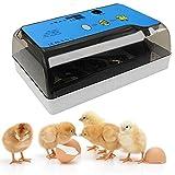LIVHOOU Couveuse œufs Automatique Incubateur 12 œufs poules Retournement auto Contrôle de l'Humidité et de...