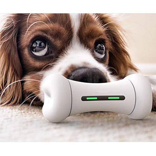 YOUANDMI Intelligenz Interaktiv Hundespielzeug & Katzenspiel, Wicked Elektrisch Unzerstörbar Hundeknochen - 12 Emotionales System - Hunde & Katzen Zubehör Für Unterwegs, Bones + Grassgreenwheels