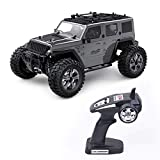 Dpliu 1/14 Control Remoto Car 4WD Off Off RC Car Car 35 KM / HR Carreras de Alta Velocidad 2.4GHz Camiones de Control de Radio Coches de Juguete, para niños y Adultos ( Color : Black )