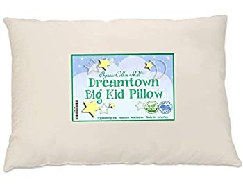 Dreamtown Kids Big Kid Pillow with an Organic Cotton Shell Unbleached 16x22  13x19 Once Filled so Larger Than a Toddler Pillow  Made is USA with 100% USA Sourced Material.