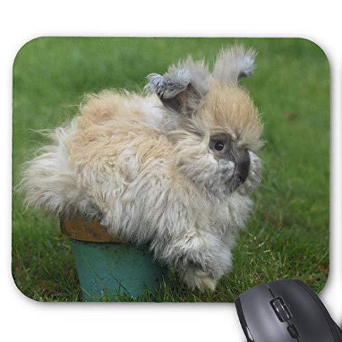 Mouse-Pad 24*20cm | Qualit?ts-Mauspad aus strapazierf?higem Kunststoff mit rutschfester Unterseite aus Zellkautschuk - passend f¨¹r alle g?ngigen Mouse-Angorahase auf Blumentopf