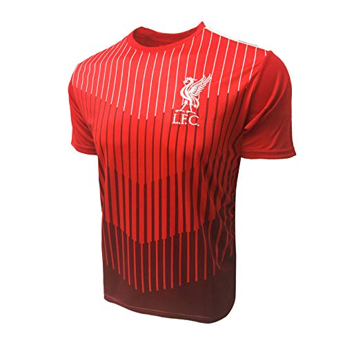 Liverpool FC Training Jersey, Red Stripe Liverpool Shirt (Youth Large 10-12 Years)