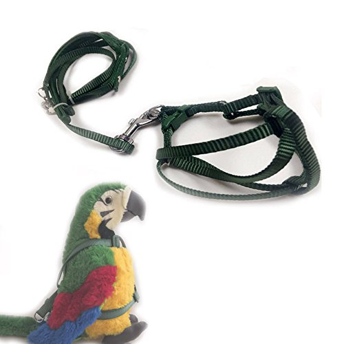 ASOCEA Adjustable Feather Tether Bird Harness and Leash for Macaw Cockatoos Amazon Parrot Medium to Large Breed Parrots Fits Birds Chest Between 33-50cm/13-19.7inch