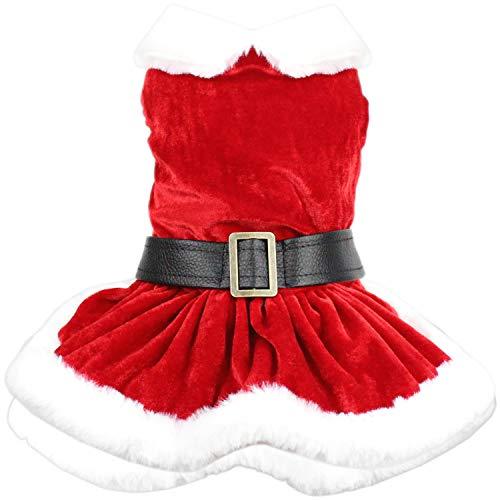 Parisian Pet Dog Cat Pet Xmas Holiday Christmas Mrs Claus Winter Dress, S