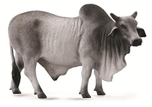 CollectA 88579 Grey Polled Brahman Bull  5.3 L x 3.3 H