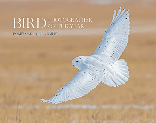 Bird Photographer of the Year: Collection 6