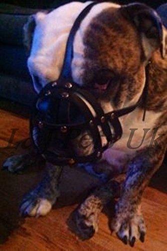 Pets Maulkorb für Englische Bulldoggen und andere kurzschnauzige Rassen, Leichtes Leder