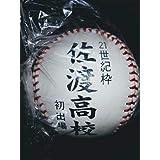 高校野球/強豪・佐渡高校 21世紀枠 選抜初出場 記念ボール 甲子園