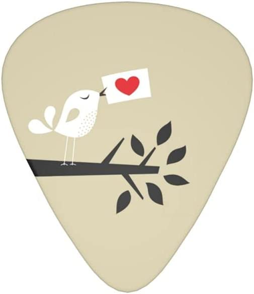 OFFicial 12-Pack Guitar Picks Bird Ranking TOP14 Thick Card Love