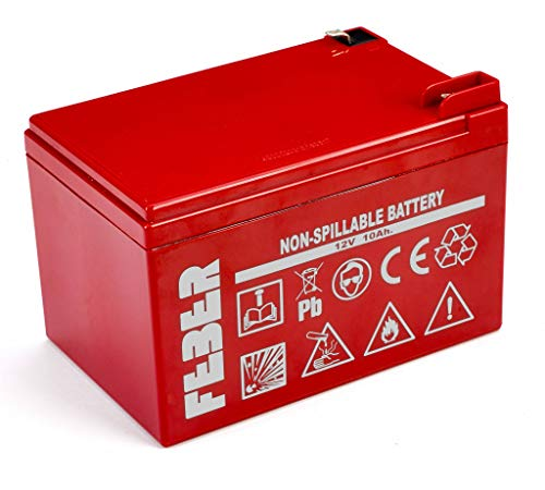 FEBER Battery 12V 12Ah - Batería/Pila Recargable (12000 mAh, Toy, 12 V), Funciona también para 12 V 10 Ah