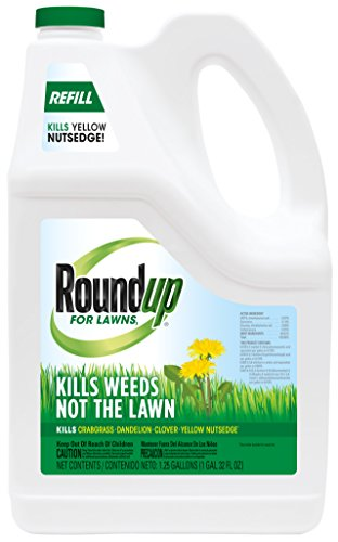 Roundup for Lawns1 Refill (Northern), 1.25 gal. - Lawn Safe Weed Killer for Northern Lawns - Kills Crabgrass, Dandelion, Clover and Yellow Nutsedge - Kills Weeds, Not The Lawn