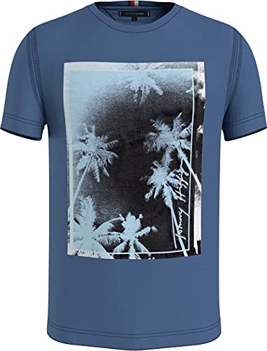 Tommy Hilfiger Palm Photo Print tee Camiseta, Pebble Azul, XL para Hombre
