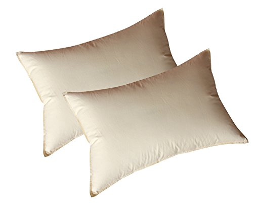 「2個入り」 羽根枕 綿100% 枕 安眠 人気 肩こり まくら 快眠枕 高級ホテル仕様 安眠枕 高反発枕 フェザー100% 2倍の洗浄度 洗浄 抗菌 防臭 防ダニ 2個入り 43×63�p