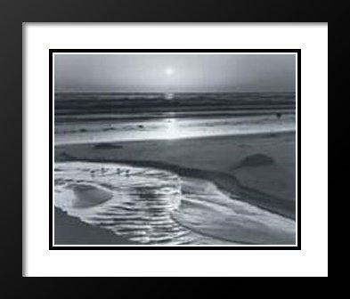 Ansel Adams Framed and Double Matted Art Print 20x23  Birds on a Beach