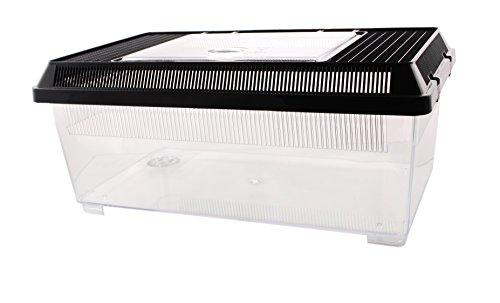 Plastikterrarium flach, 37x22x16cm