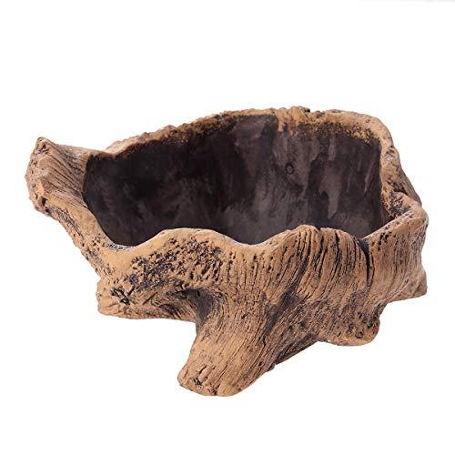 Driftwood - Fioriera in legno per cemento e fiori, per piante grasse, radici di alberi