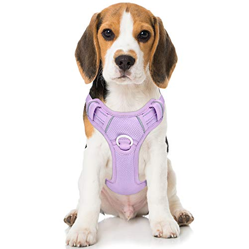 BARKBAY No Pull Dog Harness Front Clip Heavy Duty Reflective Easy Control Handle for Large Dog Walking with ID tag Pocket(Violet Purple,M)