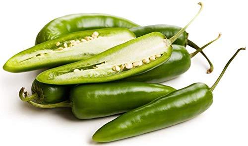 100 Stück Hot Jalapeno Pfeffersamen Chilisamen Gemüsepflanzensamen Hausgarten Hof Samen