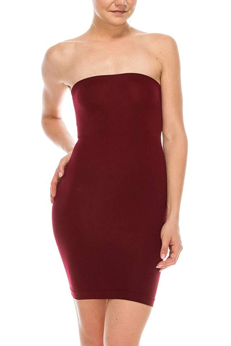 JuJuRa Seamless Smoother Tube Slip Dress (One Size)