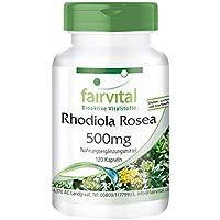 Rhodiola Rosea Cápsulas - 500mg de extracto de Rhodiola Rosea pura por cápsula - Vegano - 15mg de rosavin/ 5mg salidrósida - 120 Cápsulas
