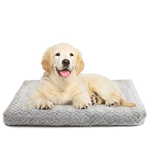 "rabbitgoo Dog Bed Crate Pad 29"" x 21"" with Removable & Machine-Washable Cover, Super Plush Dog Crate Mat with Anti-Slip Bottom, Medium Large Pet Kennel Bed Pad, Thick Soft Cotton Core for Sleeping Beds"