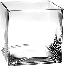 CYS EXCEL Glass Cube Vase, Cubic Flower Vase, Squared Candle Holder, Centerpiece Cubed Vase, Pack of 1