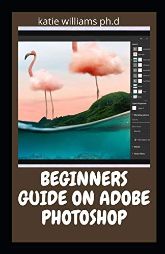 BEGINNERS GUIDE ON ADOBE PHOTOSHOP: Essential Manual on Image Editing, Enhancing and Manipulation Adventure 2021 Edition