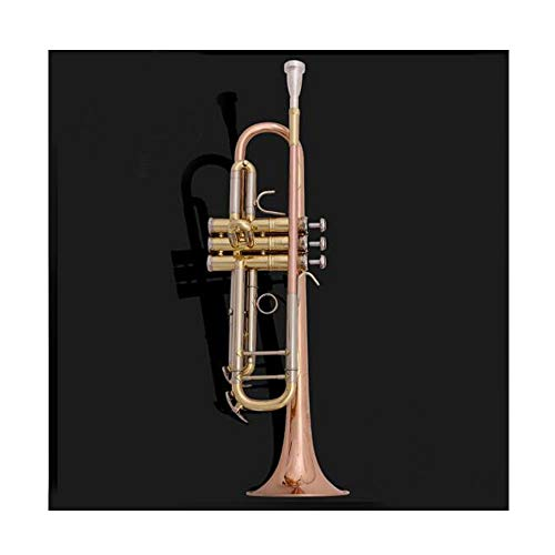 Qiaoxianpo01 Trompete, Silber plattiert Lackierte Gold-Trompete Instrument B Flat Anfänger Test Professional Performance, DREI Stile Optional, Blasinstrument ( Color : Bronze )
