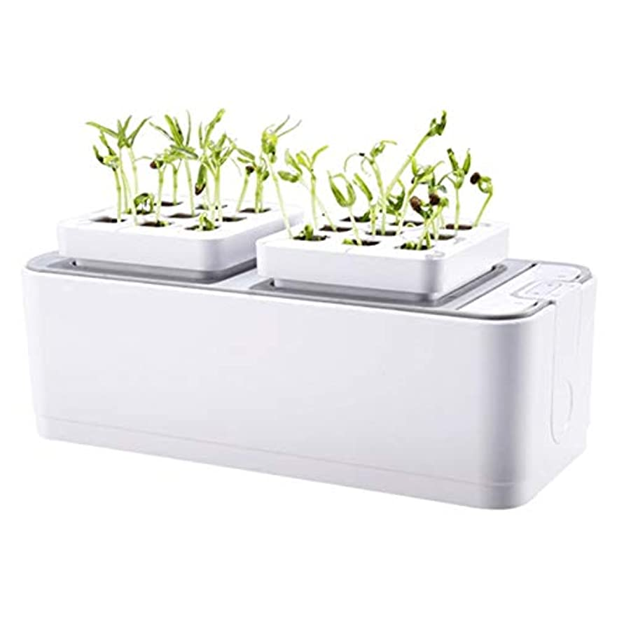 表面瞬時に枯れるXigeapg バッテリー無土壌栽培プラント苗木育成キット水耕栽培キット植栽サイト園芸植物システム野菜ツールボックス