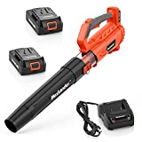 Best Battery Leaf Blowers - MAXLANDER Leaf Blower Cordless, 335CMF&90MPH Electric Handheld Blower Review