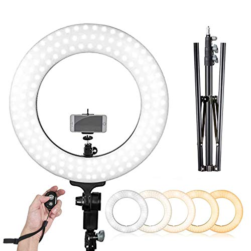 LimoStudio 14-inch Diameter LED Ring Light, Continuous Lighting Kit, 5500K, Good for Beauty Facial Shoot, Light Stand Tripod, Cell Phone Spring Clip Holder, Photo Studio, AGG2028V6