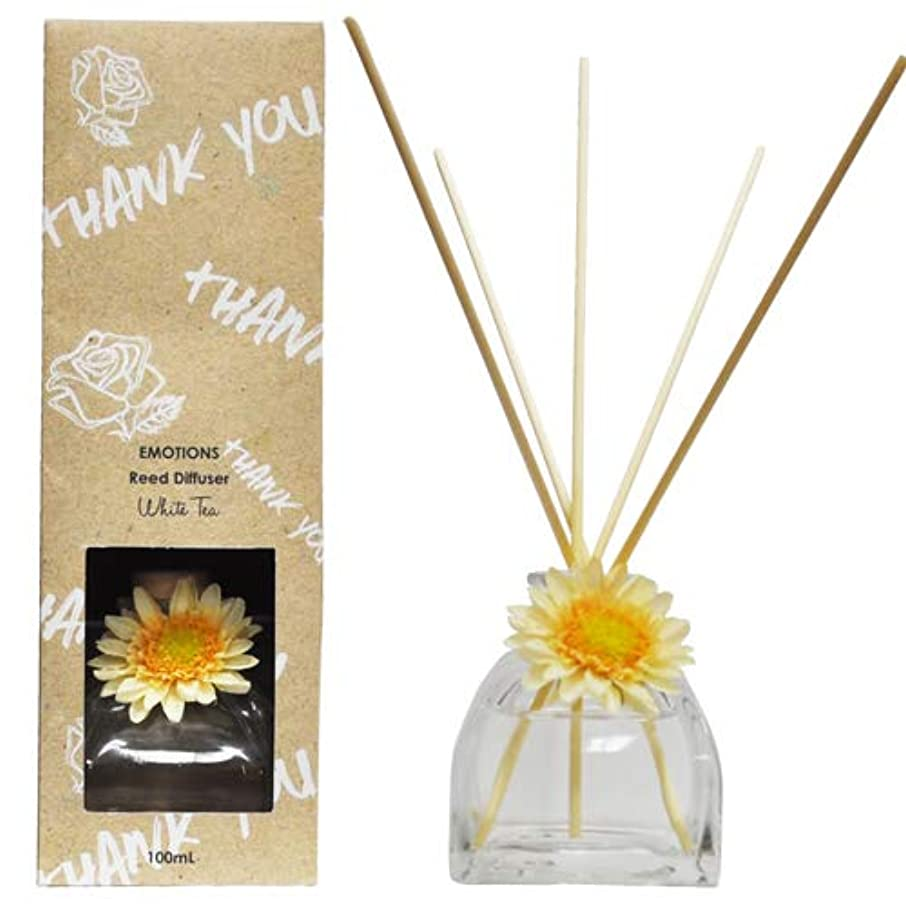 座る沼地経験者EMOTIONS エモーション Fibre Reed Diffuser リードディフューザー Thank You サンキュー(White Tea ホワイトティ)