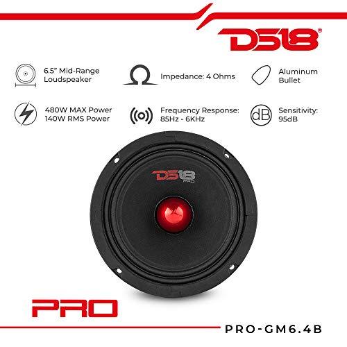 DS18 PRO-GM8B Loudspeaker - 8