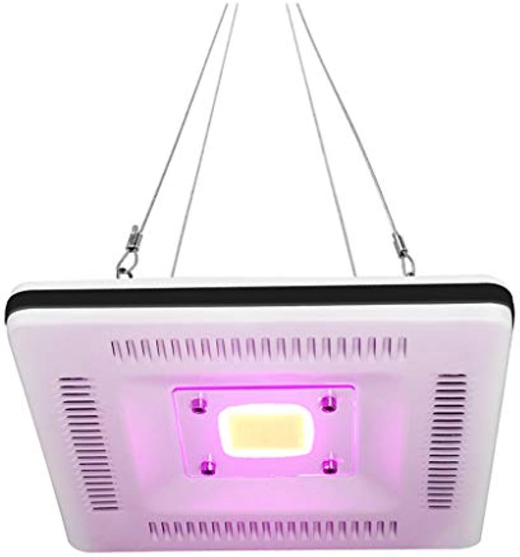 WYNA LED Pflanzenlicht, 50W Circular Square IP67 Wasserdichte Vollspektrum-Aufhngerlampe für Indoor-Outdoor-Pflanzen, die Gemüse wachsen und blühen,Square,EU