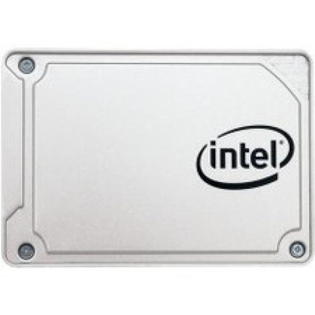 後継場所基礎理論インテルssdsc2kf256g8?X 1?SSD Pro 5450シリーズ256?GB 2.5?inInT SATA 6?Gb/s 3d2?TLC小売Single Pk