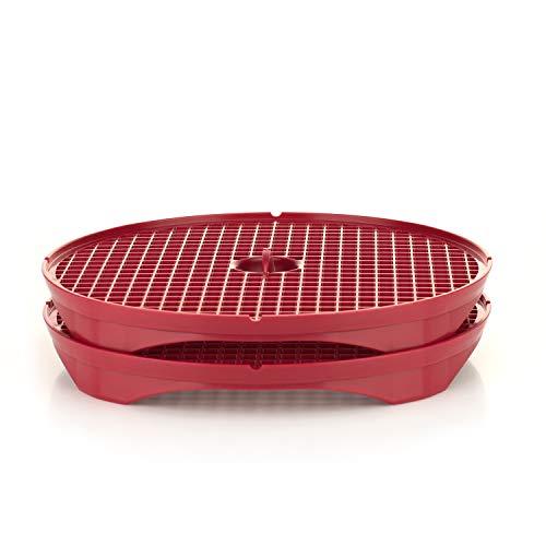 Börner Crispymaker 2er Set rot Kartoffelchips Gemüsechips fettfrei Lowcarb rote Beete karottenchips Obstchips