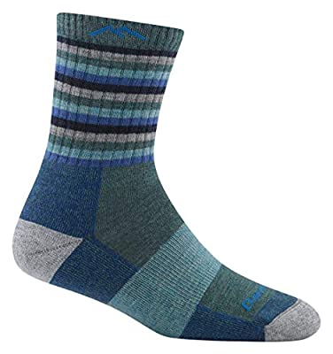 Darn Tough Hike/Trek Micro Cushion Stripe Crew Socks - Women's Aqua Stripe Medium