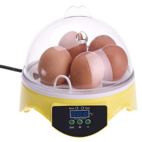 QUUY Eier Inkubator 7 Eier Vollautomatischer Digitaler Eierinkubato Eier Brutautomat Mit Temperaturregelung, Kleiner Geflügel Inkubator Brutapparat Brutkasten Für Hühner, Enten, Wachteln